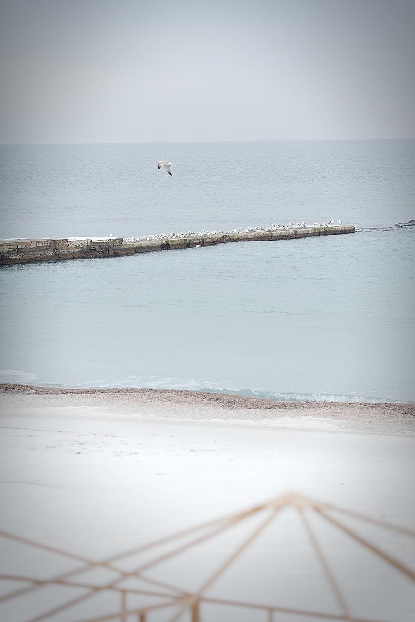 black sea odessa ukraine