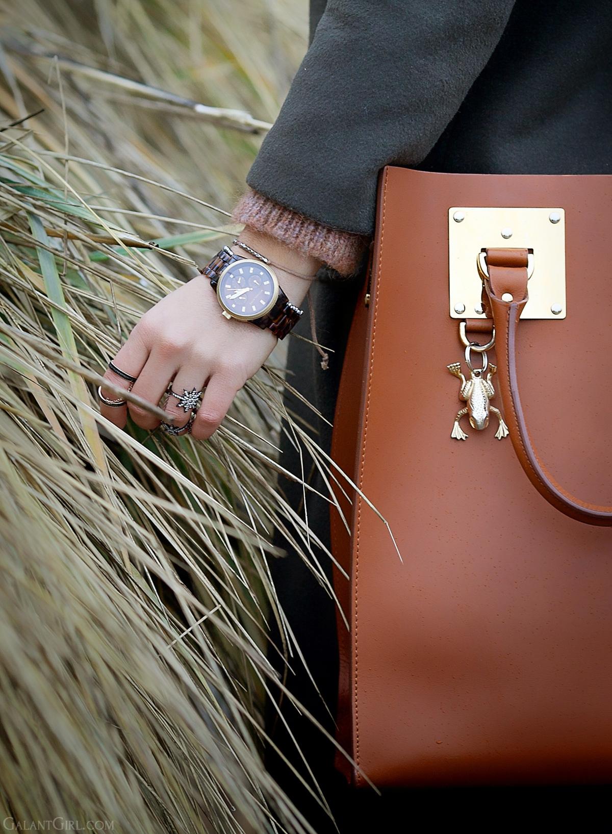 Sophie Hulme tote bag in brown, Sophie Hulme bag, GalantGirl