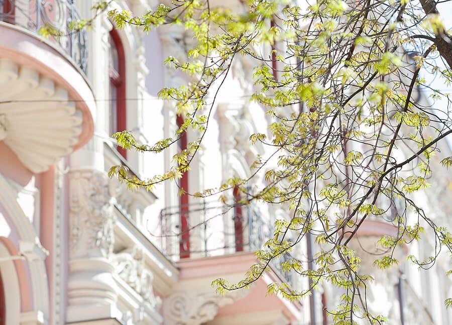 odessa-in-spring